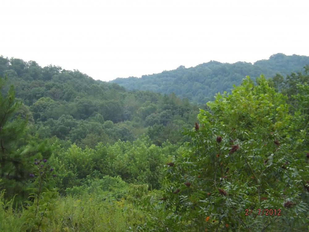 58.90 acres farm and wooded land