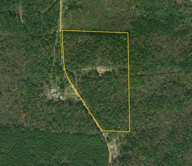 Taylor Springs Road Homesite/Hunting Tract