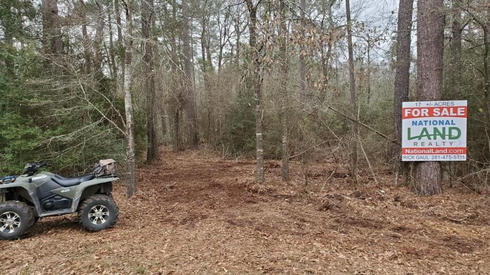 Large Wooded Home-site / Recreational in Walker County, TX