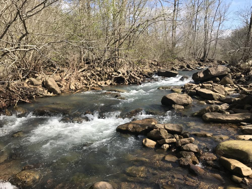 250+/- Acres on South Fork Little Red River in Van Buren County, AR