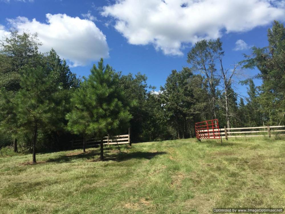 Durant Recreational & Timber Tract in Holmes County, MS