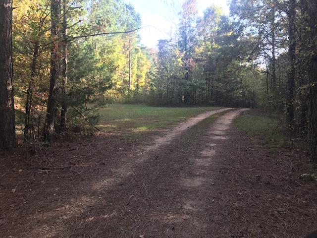 Recreational and Potential Homesite Acreage in Holly Springs