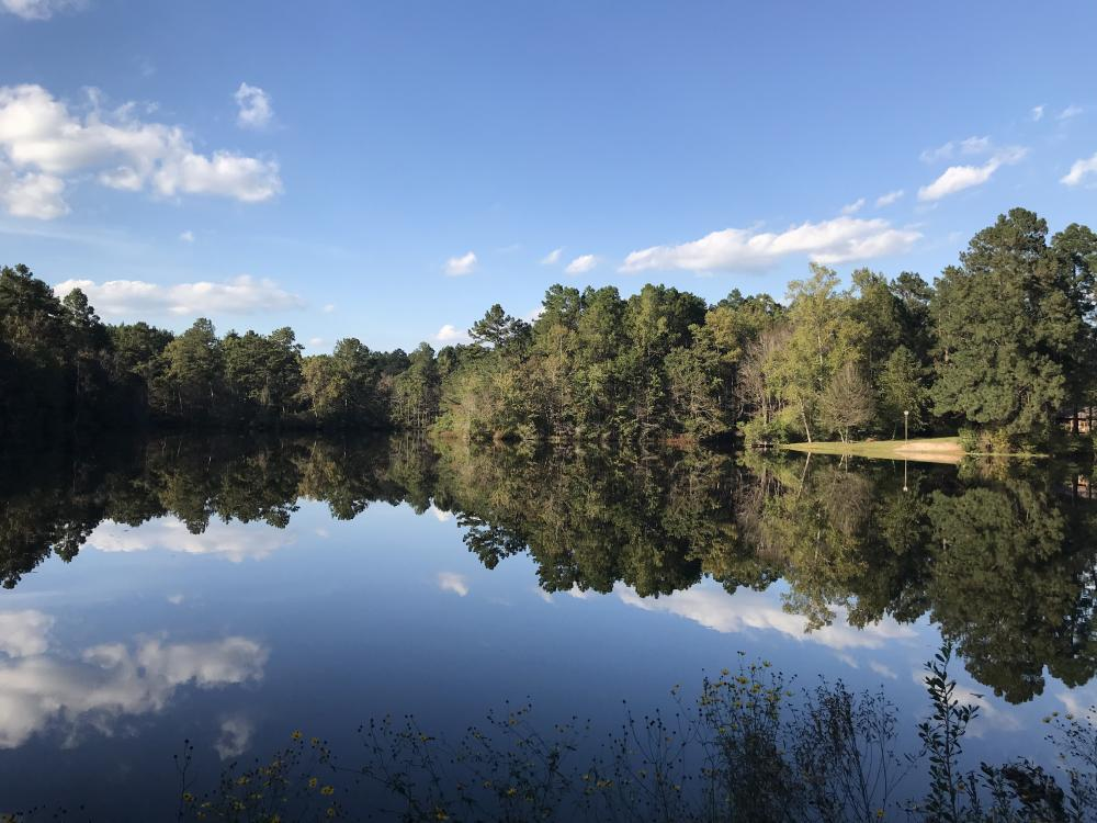 Large Acre Estate with Lake in Lamar County, MS