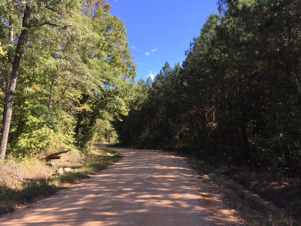 Rock School Road Timber Homesite or Development Tract in Shelby County, AL