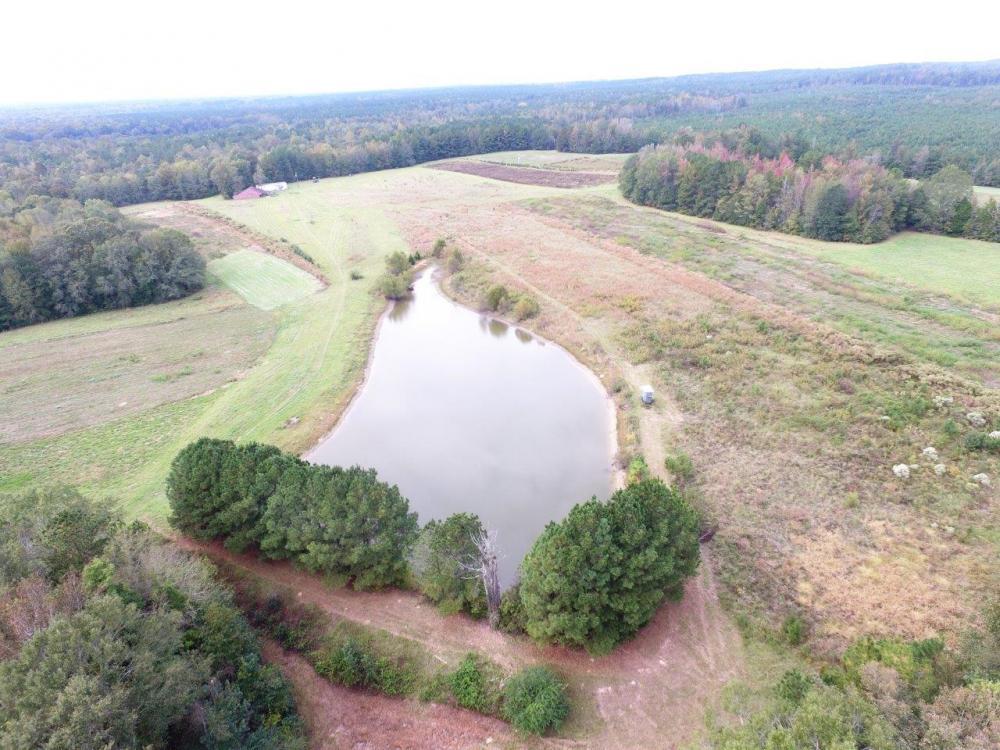 Kinterbish Creek Hunting, Timber, and Investment Tract