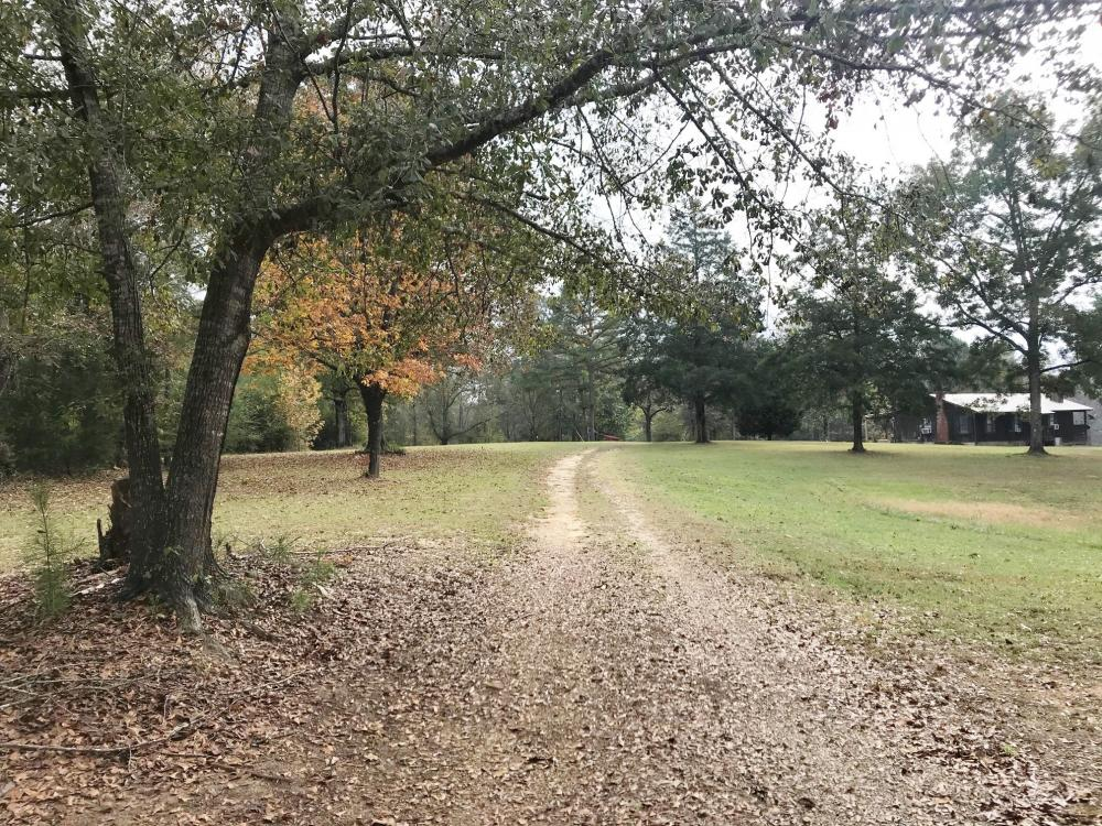 Sipsey Valley Recreational Tract in Tuscaloosa County, AL