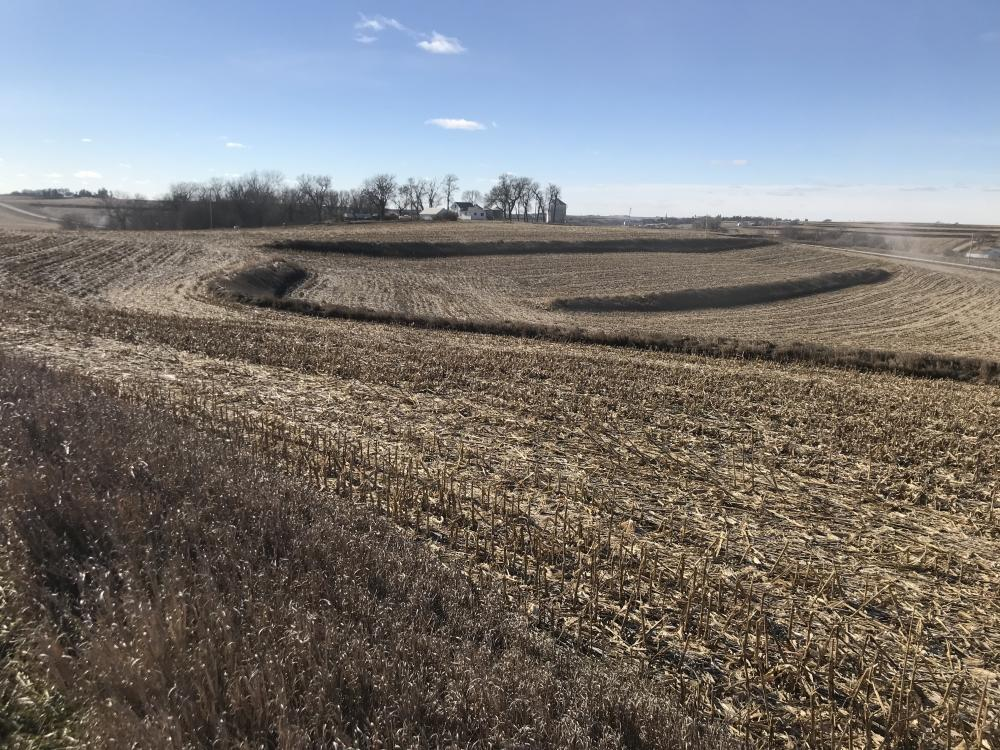 North Earling 50 acres of Farm Land in Shelby County, IA