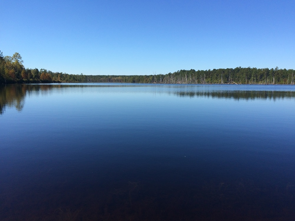 Lakefront Recreational Tract in Chesterfield County, SC