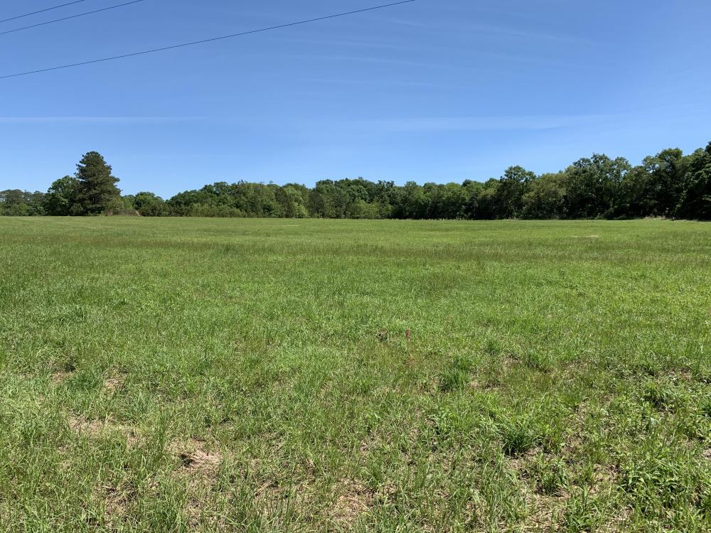 Ramsey Road Farm Tract in Mobile County, AL