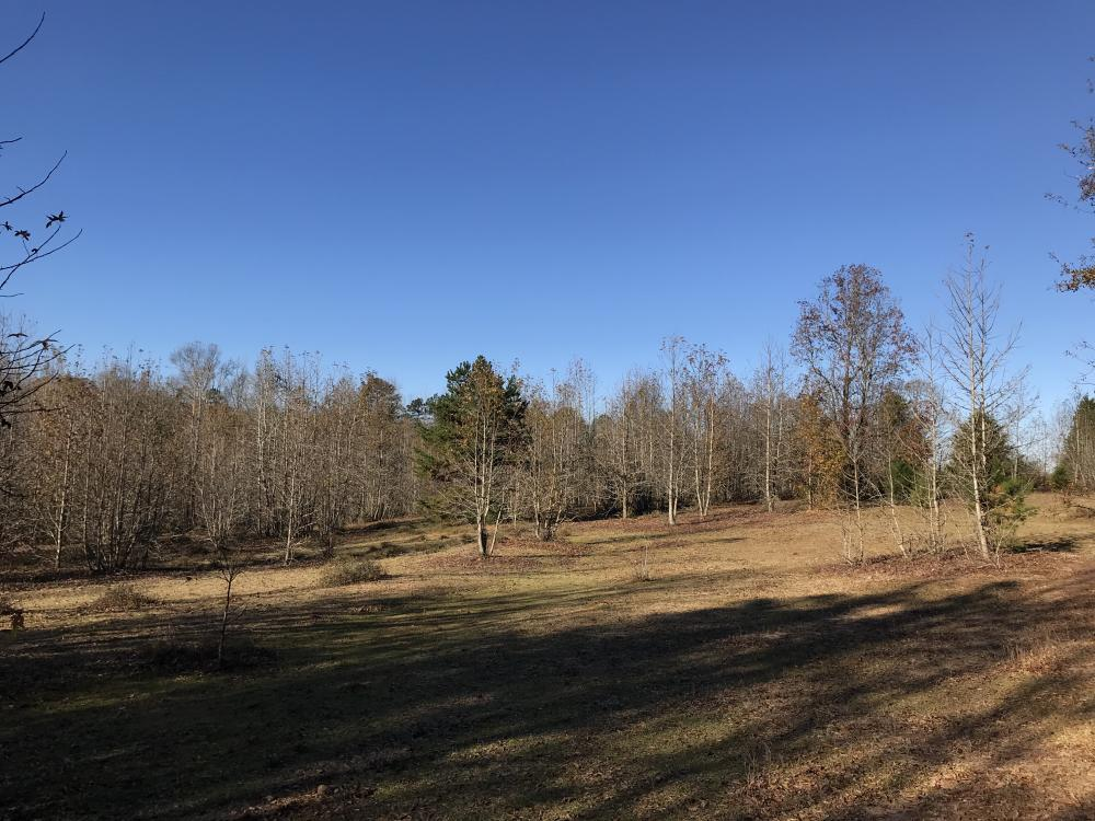 Anderson Interstate 85 Development and Homesite Land in Anderson County, SC