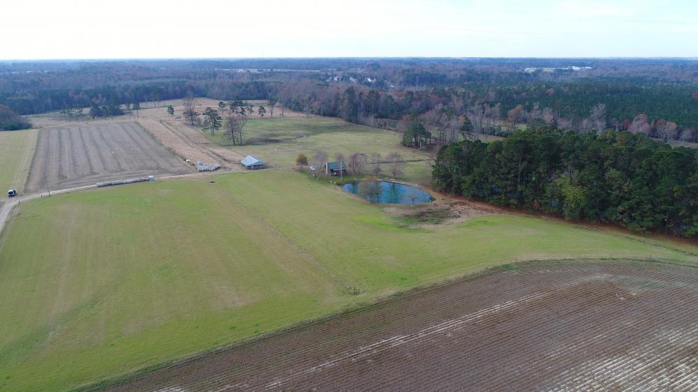 Stricklands Crossroads Secluded Ranch with Timberland in Johnston County, NC