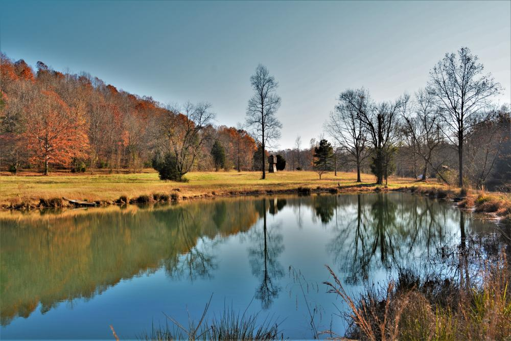 Kiethly Branch Recreation and Creek Front Development Property in Lauderdale County, AL
