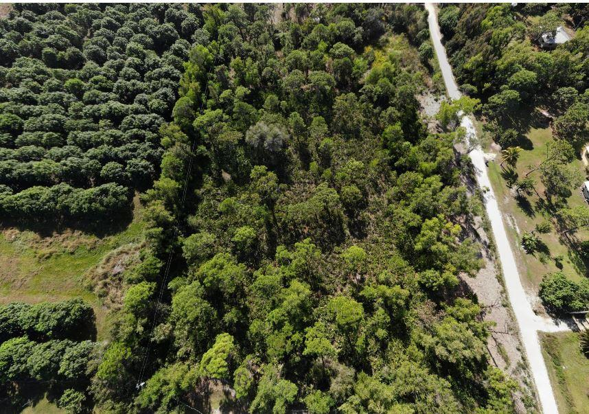 Tropical Pine Island large homesite in Lee County, FL