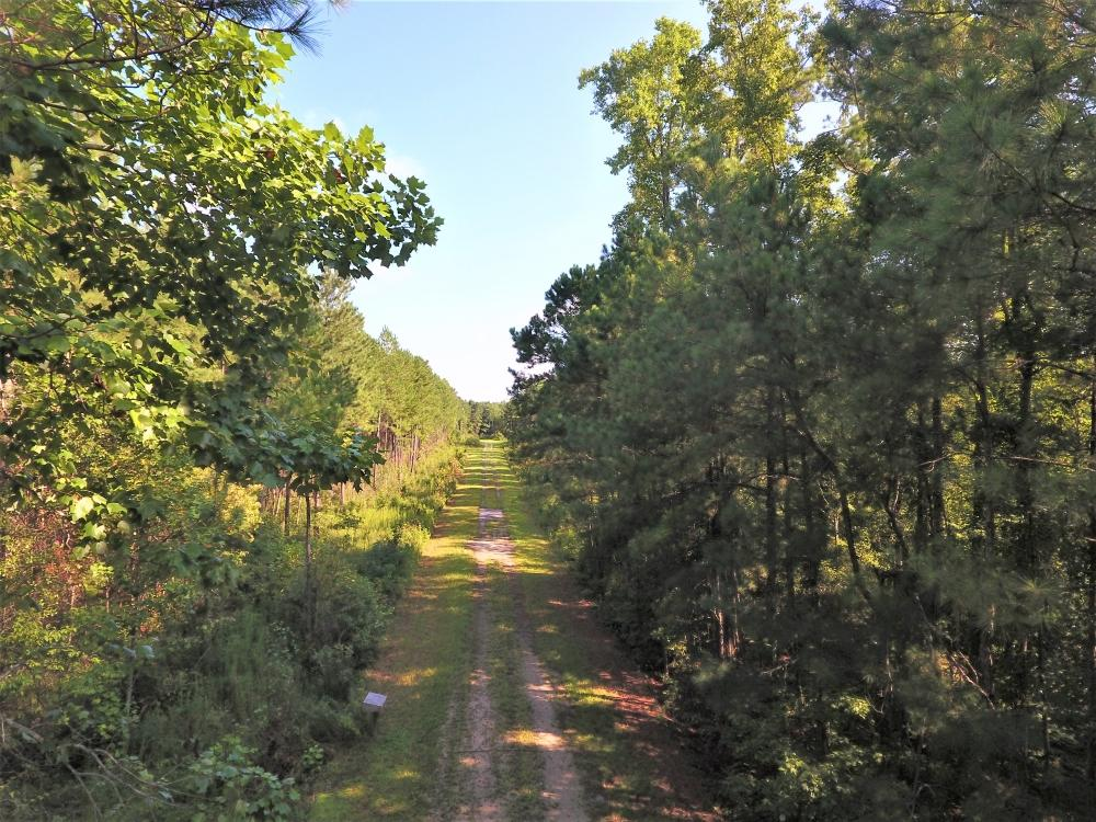 White Oak River Timber Tract
