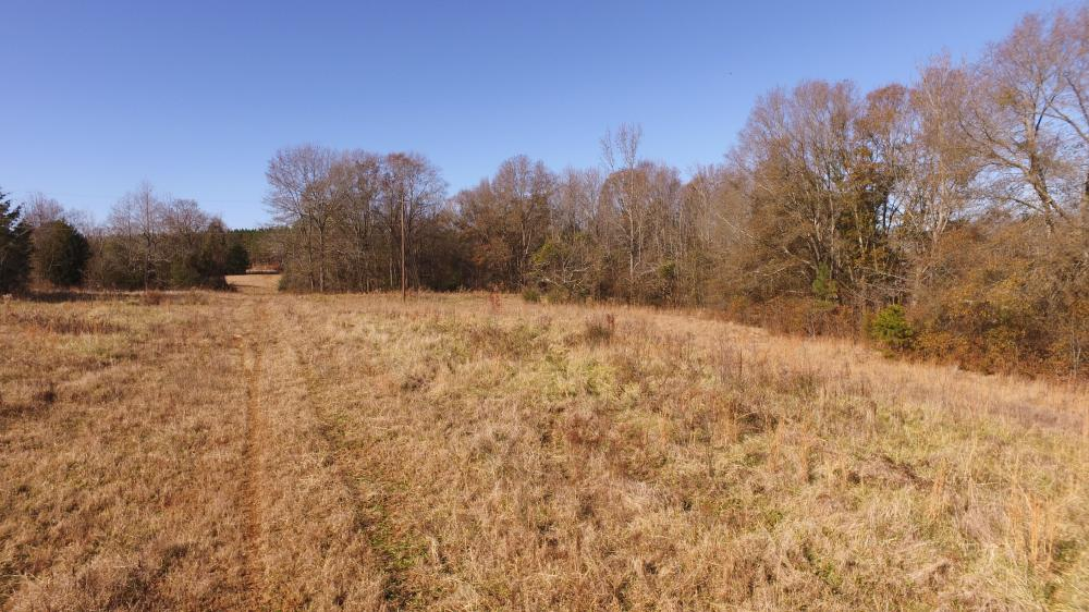 Anderson Farm Land and Homesite