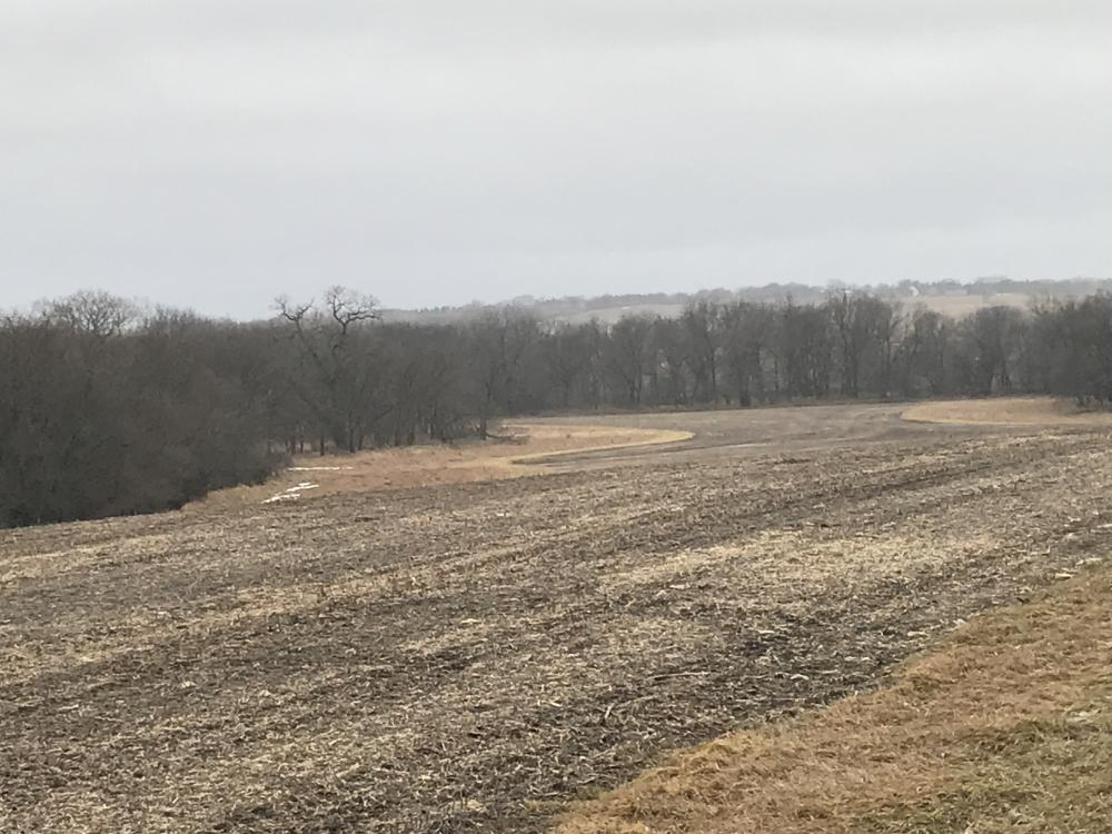 Palmyra 133 acres  in Otoe County, NE