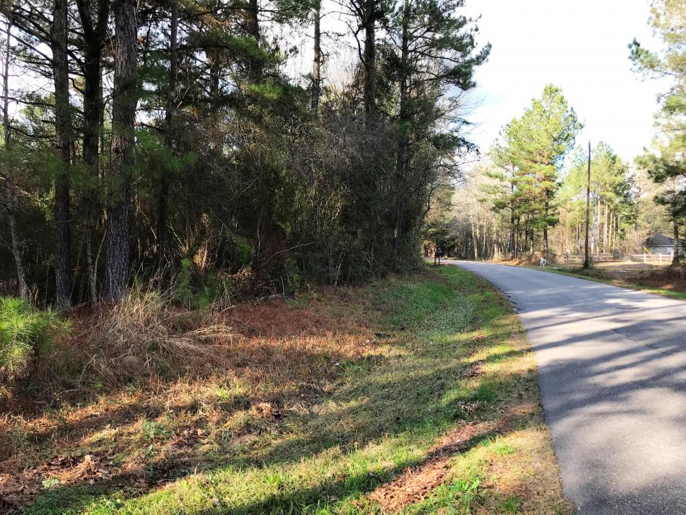 Versatile Timber and Residential Tract in Jones County, MS