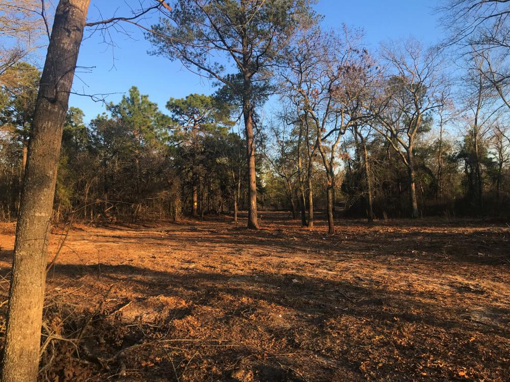 Elgin Development Tract in Kershaw County, SC