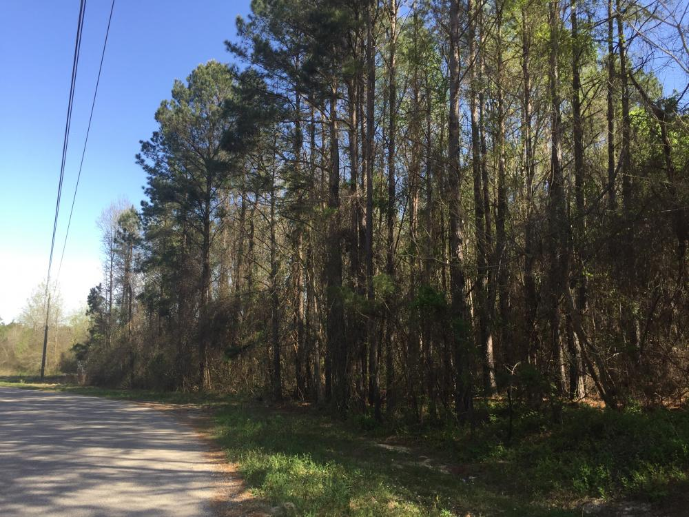 3.87 Acre Commercial Hwy 601 Tract in Kershaw County, SC