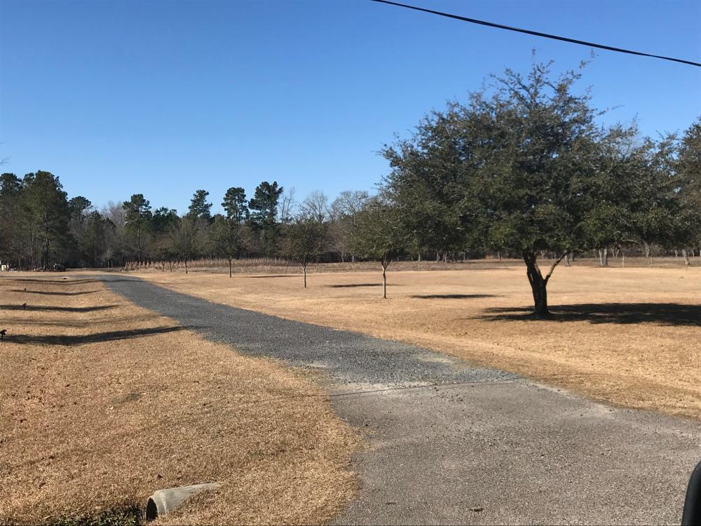 Spiers Circle Home Site in Berkeley County, SC