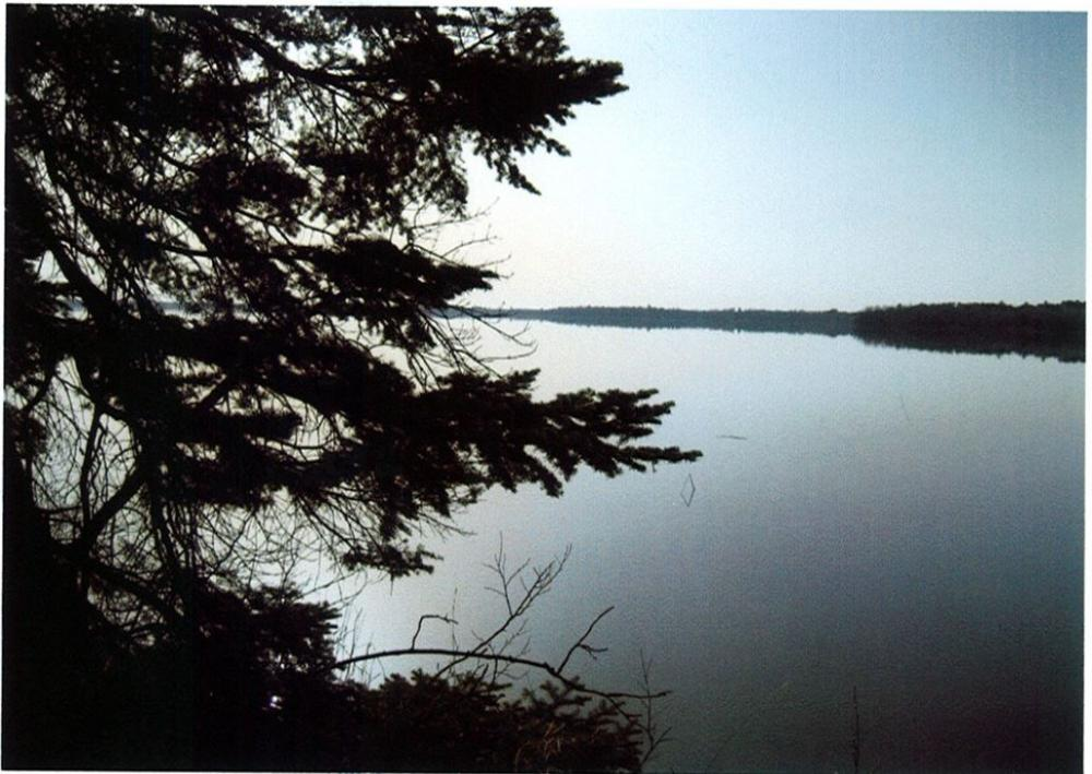 Steamboat Lake, Walker, MN Bldg Site -- PRICE REDUCED! in Hubbard County, MN