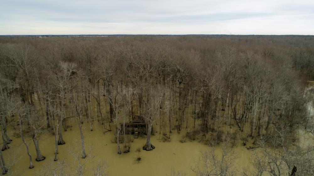 336+/- Acres Flooded Timber Duck Hunting & Farmland