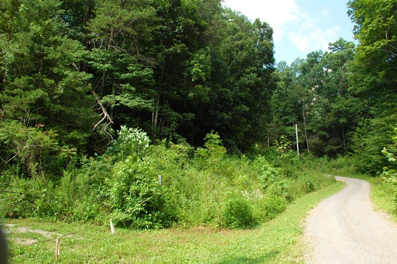 Private Residential Lot in Cocke County, TN