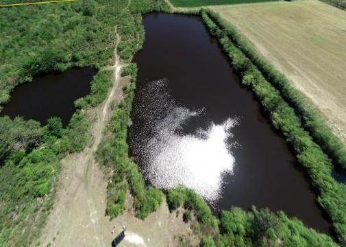 Riverfront Hunting & Farmland with Ponds in Lee County, SC