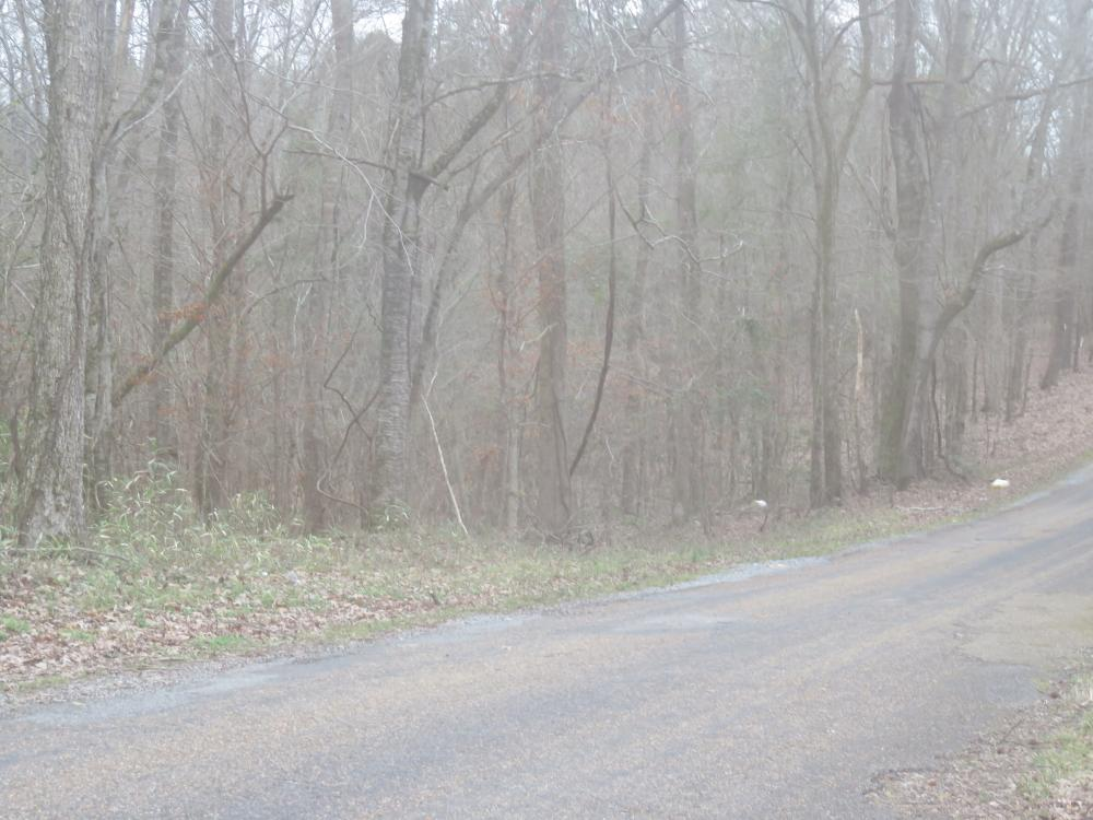 130 acre Hunting Tract