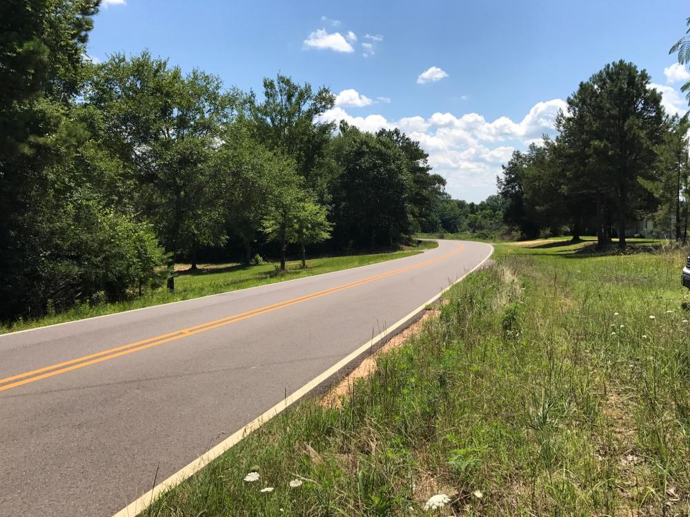 Autauga County 116 acre Home/Hunting/Rec Tract in Autauga County, AL
