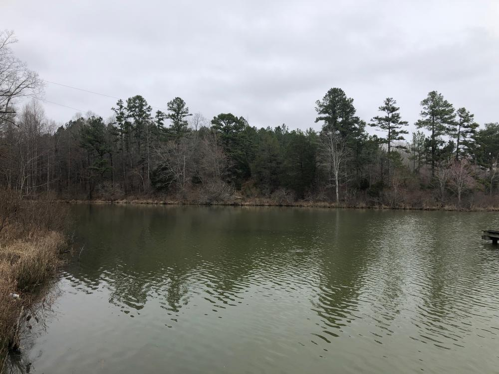 Dumas Lake Tract in Tippah County, MS
