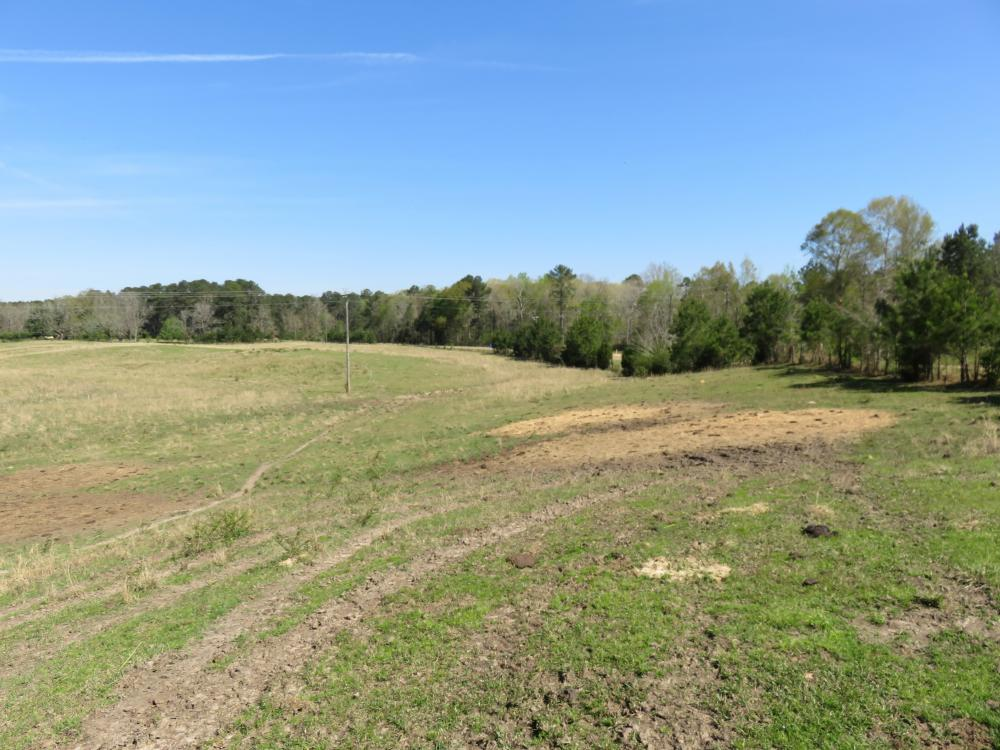 Homesite with pasture in Rankin County, MS