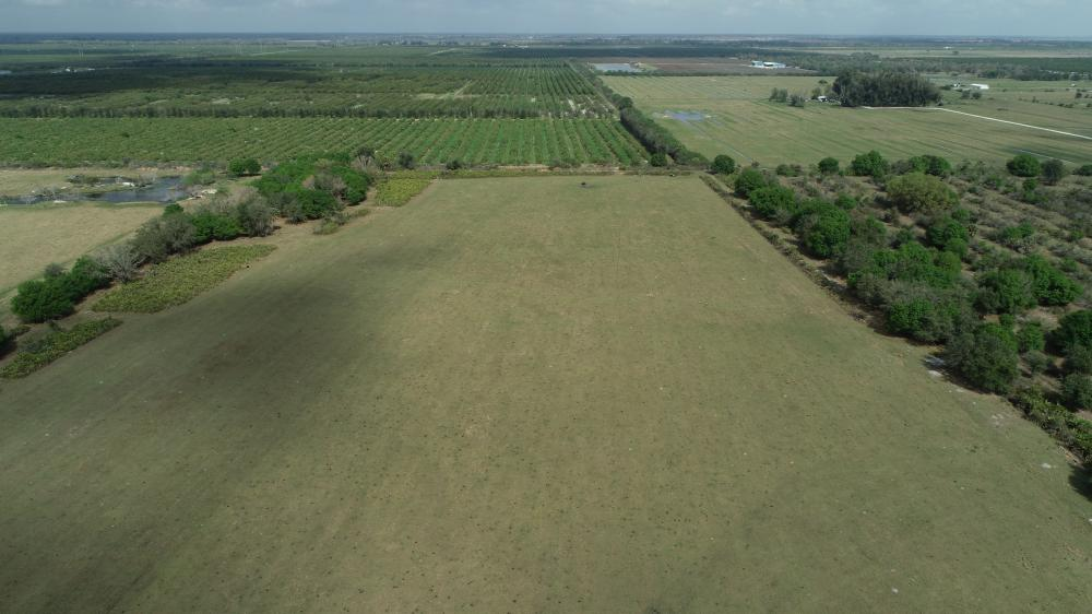 Arcadia Farmland Country Homesite in DeSoto County, FL