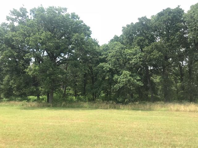 21 acres near Cedar Creek Lake, Rolling pasture, Timber, Ponds in Henderson County, TX
