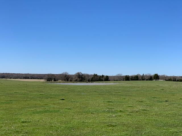 20 Acres North of Mabank, Pasture with Pond , Farming Opportunities in Kaufman County, TX