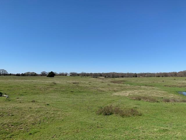 10 Acres North of Mabank, Scenic Property in Kaufman County, TX
