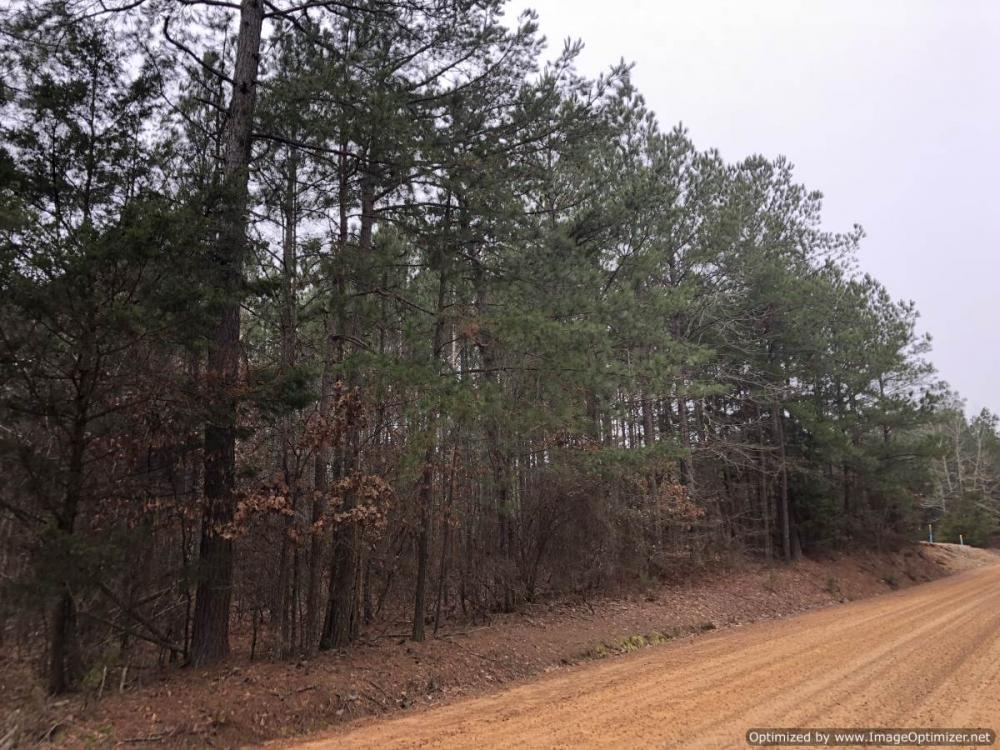 Small Hunting & Timber Tract in Attala County, MS