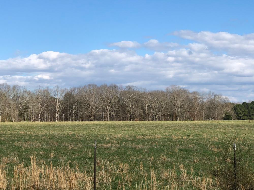 Phil Campbell Cattle Farm and Homesite in Franklin County, AL