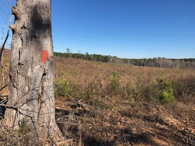 Deer Hunting Property in Attala County, MS