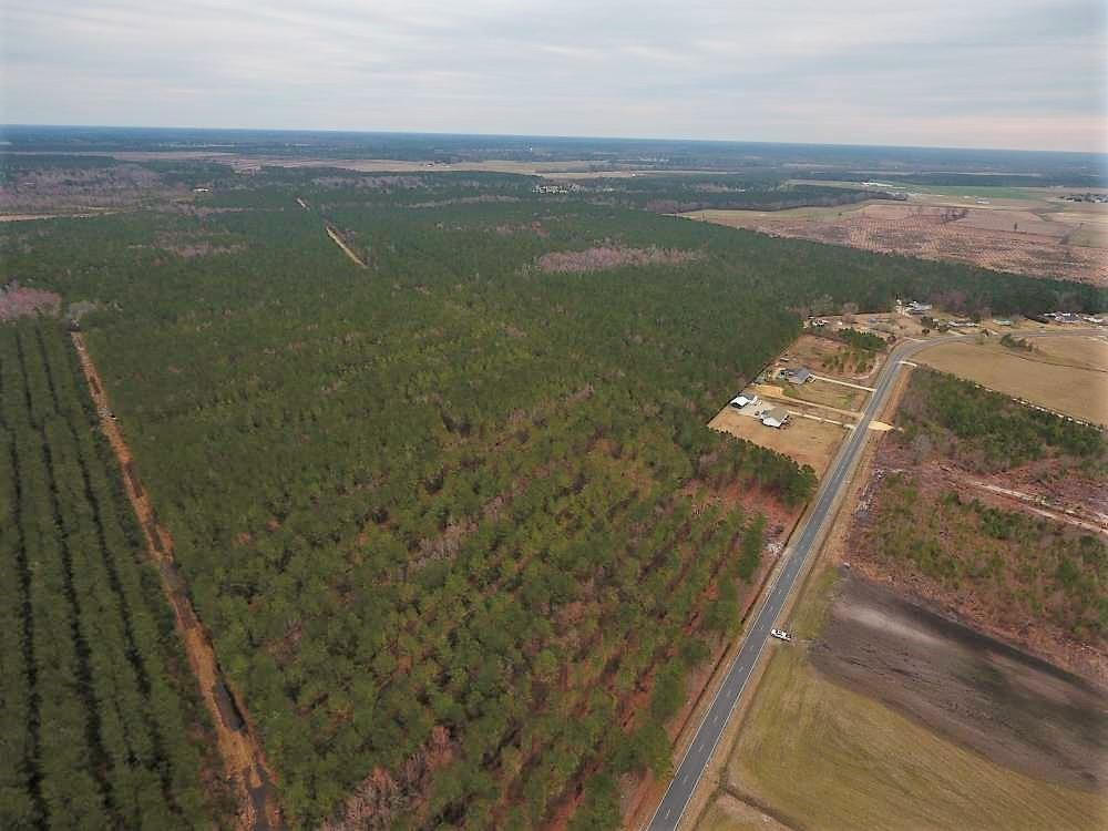 Lenoir County Timber/Hunting Tract
