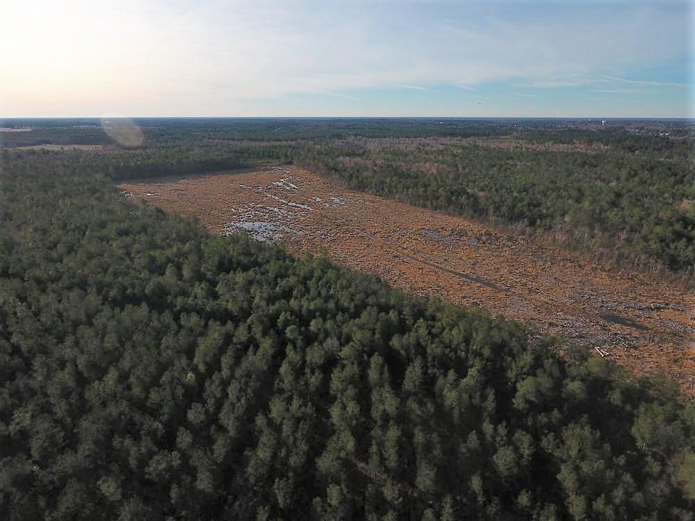 Institute Hunting Tract in Lenoir County, NC