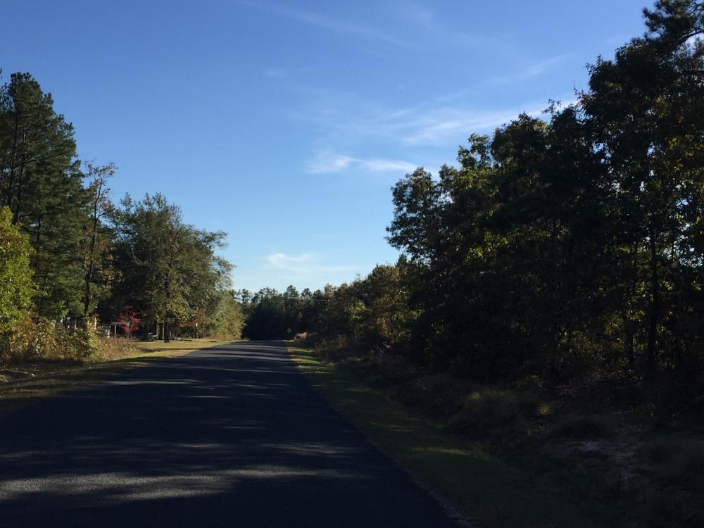Sutton Branch Recreational Land in Kershaw County, SC