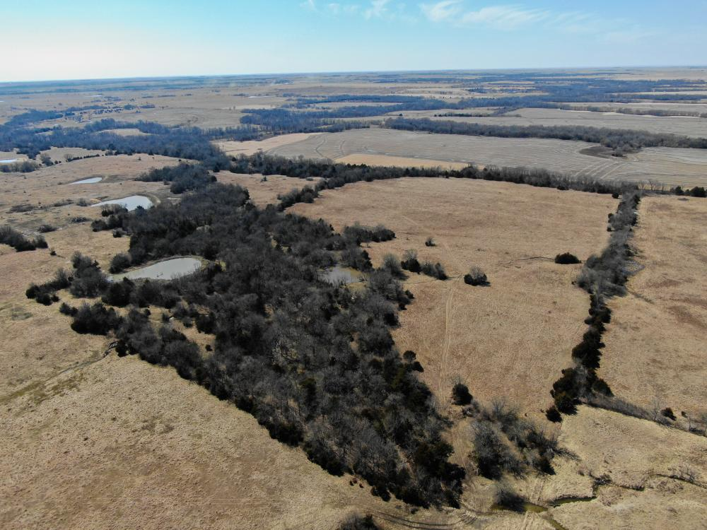 Yates Center Income Producing & Hunting Land in Woodson County, KS