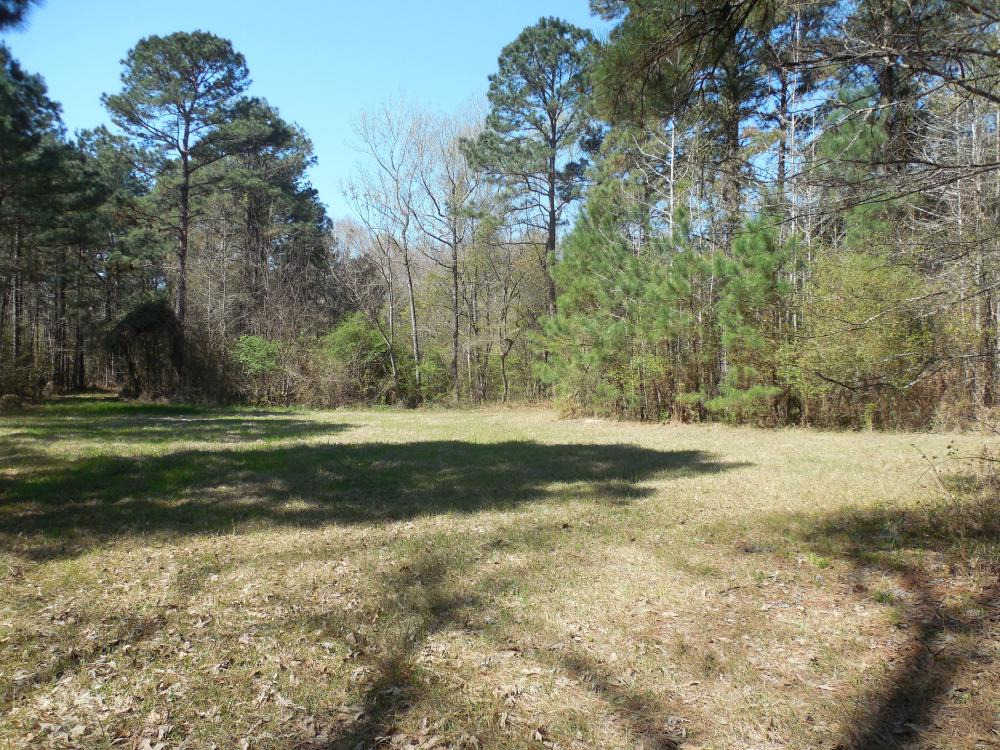 Holland 40ac in Franklin County, MS
