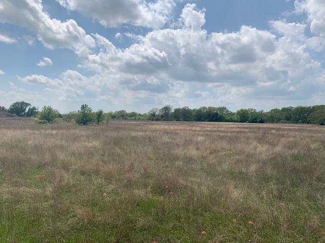 10 ac in Payne Springs, Scattered Timber, Great Building Site with Scenic Meadow in Henderson County, TX