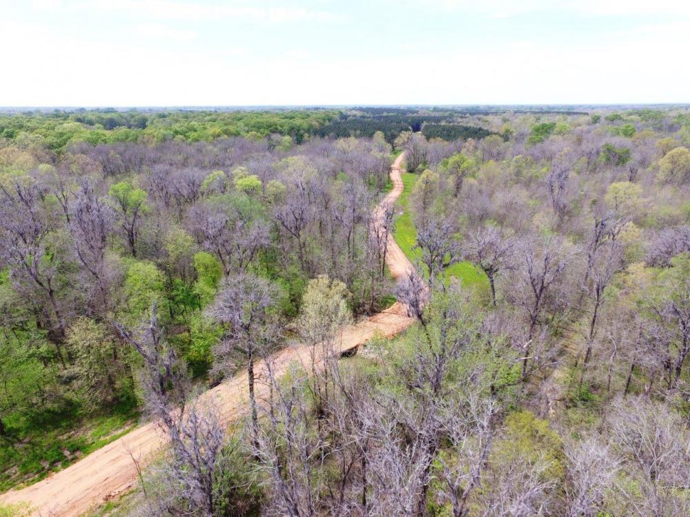 Big Swamp Creek Hunting & Timber Tract in Lowndes County, AL