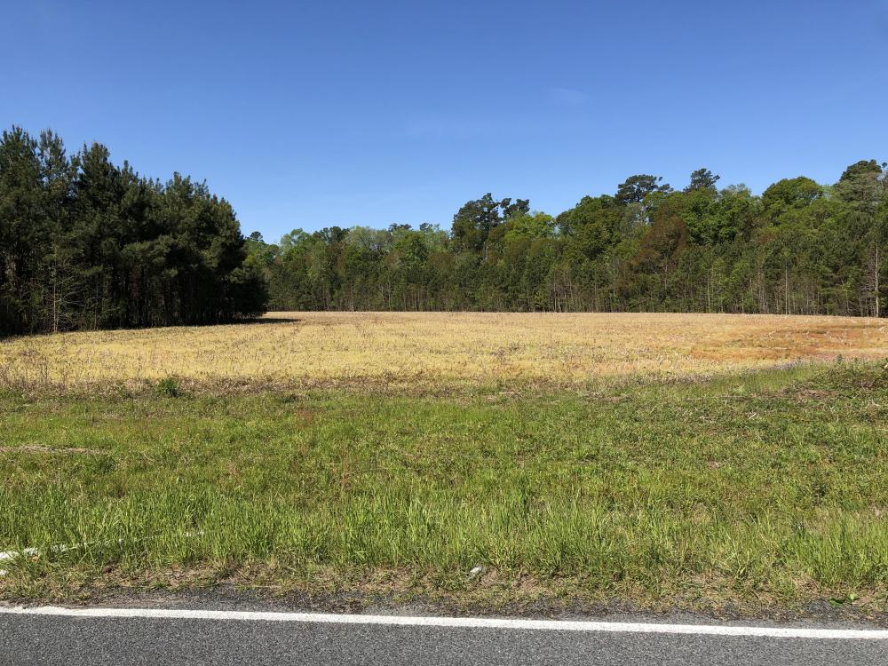 Farmland and Investment Property in Dorchester County, SC