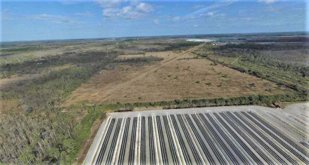 Estero SWFL Farmland Investment Opportunity in Lee County, FL