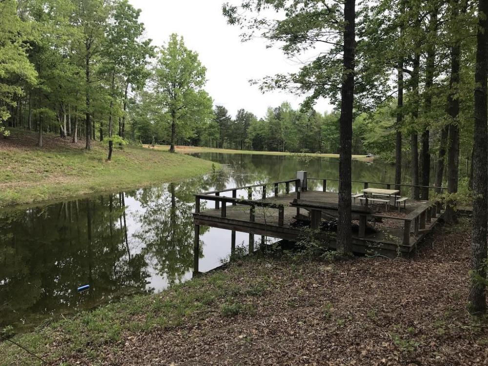 Cabin With Pond & Hardwood Between Philadelphia & Carthage in Leake County, MS