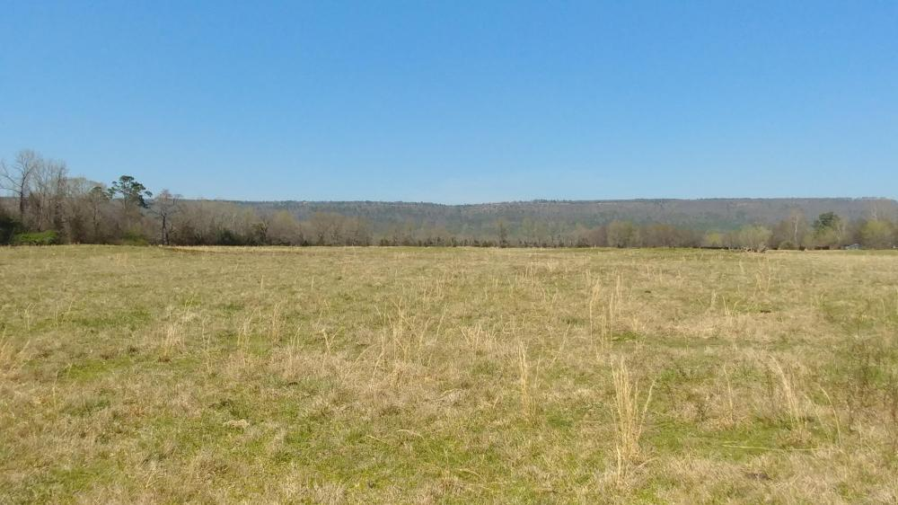 775+/- Acre Ranch at Bottom of Petit Jean Mountain in Conway County, AR